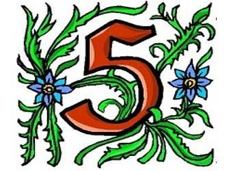 il signifcato del numero 5